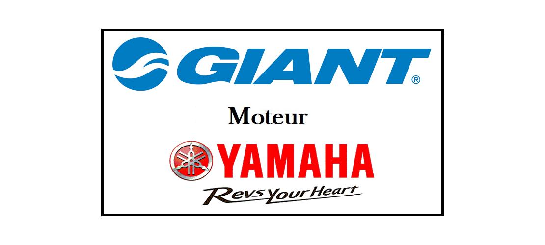 Giant Moteur Yamaha